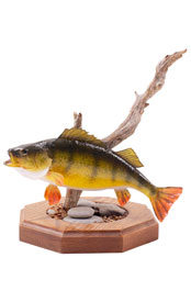 Image: Fish award. Awards and Recognitions at WISH Creative.