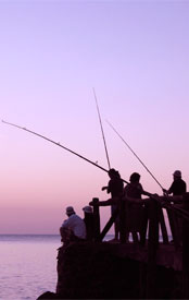 Image: Fishing. Meet our clients - WISH Creative