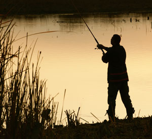 Image: Solo man fishing. Agriculture clients at WISH Creative.